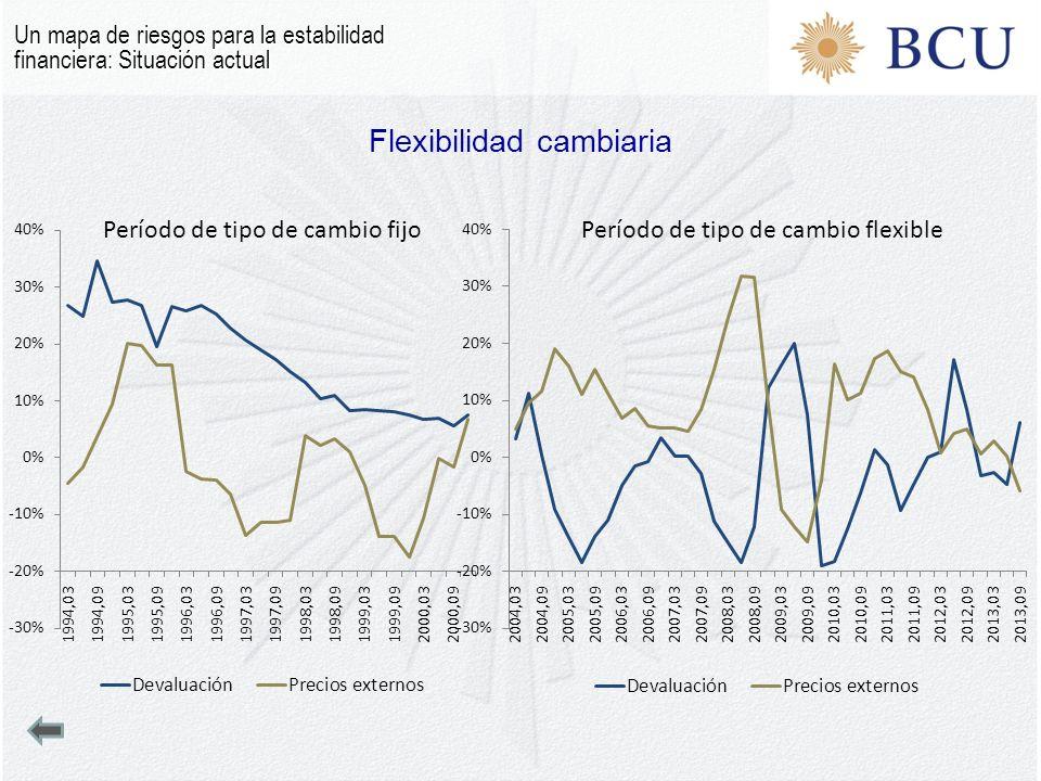 Flexibilidad cambiaria Un mapa de riesgos para la estabilidad financiera: Situación actual