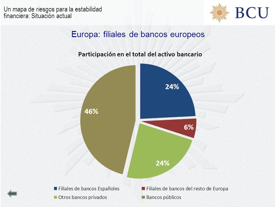 Europa: filiales de bancos europeos Un mapa de riesgos para la estabilidad financiera: Situación actual