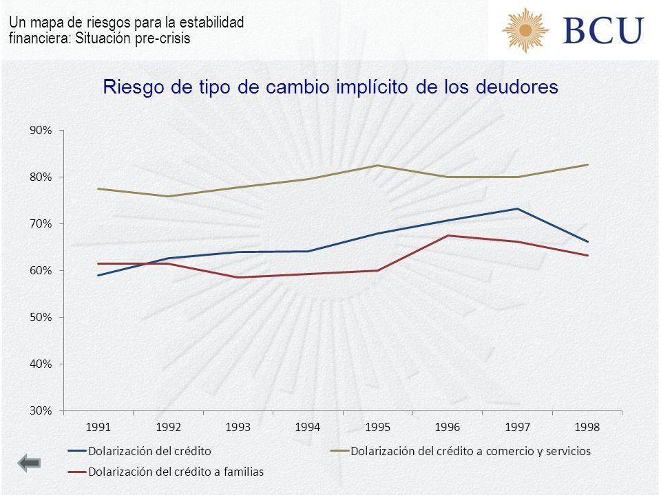 Riesgo de tipo de cambio implícito de los deudores Un mapa de riesgos para la estabilidad financiera: Situación pre-crisis