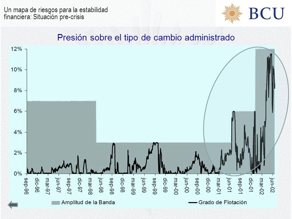 Presión sobre el tipo de cambio administrado Un mapa de riesgos para la estabilidad financiera: Situación pre-crisis