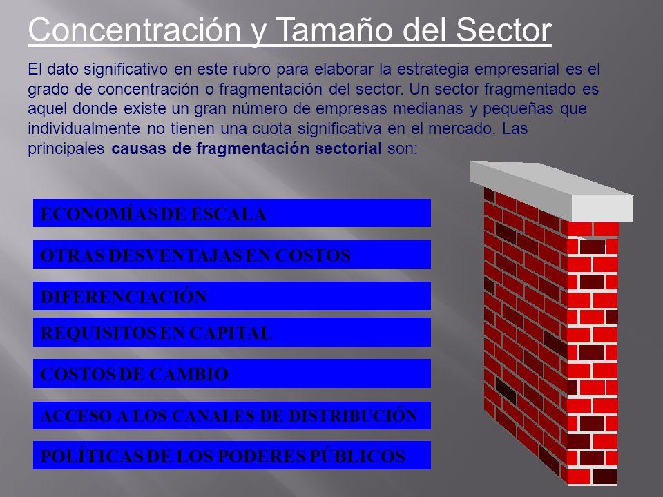 Concentración y Tamaño del Sector El dato significativo en este rubro para elaborar la estrategia empresarial es el grado de concentración o fragmenta
