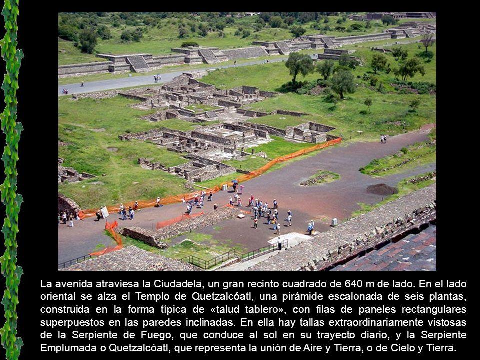 A partir de la pirámide de la Luna en dirección sur se extiende la avenida de los Muertos, de más de 3 km de longitud. En realidad, se trata de un con