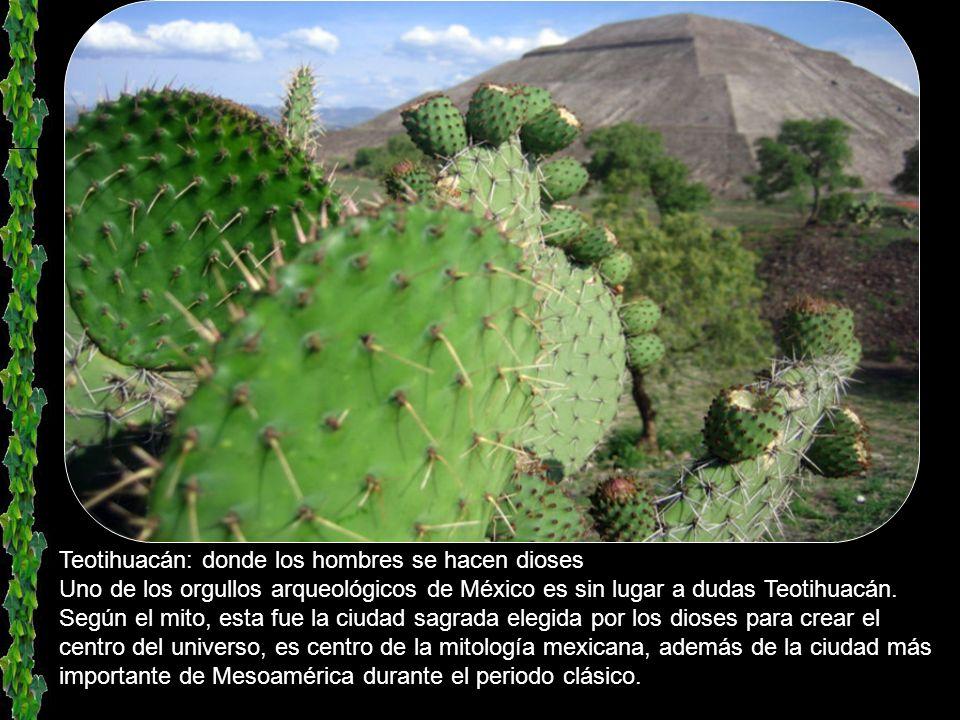 Teotihuacan, el lugar donde los hombres se vuelven dioses Las impresionantes ruinas de la gran ciudad de Teotihuacán se hallan casi a igual altitud qu