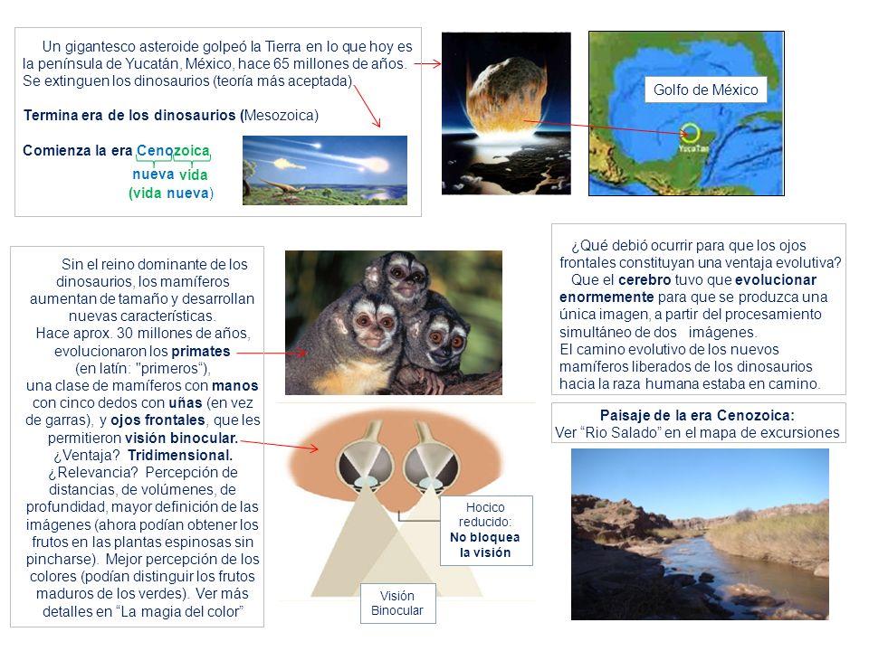 Un gigantesco asteroide golpeó la Tierra en lo que hoy es la península de Yucatán, México, hace 65 millones de años. Se extinguen los dinosaurios (teo