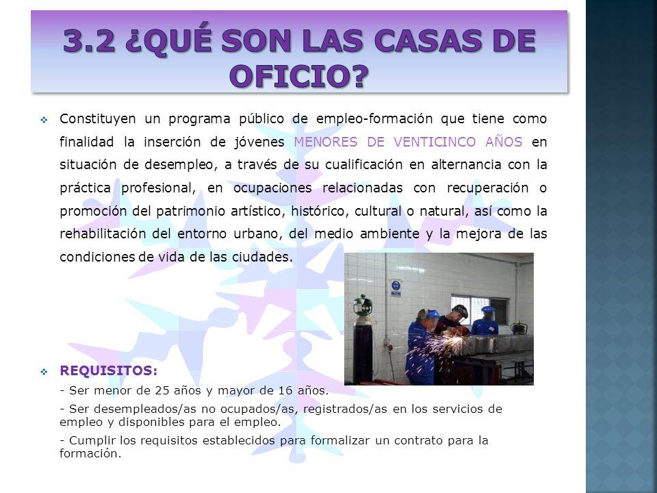 Constituyen un programa público de empleo-formación que tiene como finalidad la inserción de jóvenes MENORES DE VENTICINCO AÑOS en situación de desemp