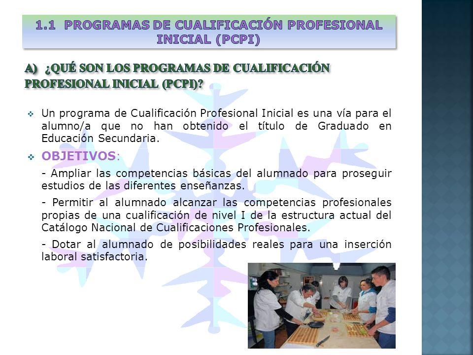 Un programa de Cualificación Profesional Inicial es una vía para el alumno/a que no han obtenido el título de Graduado en Educación Secundaria. OBJETI