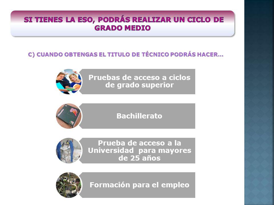 C) CUANDO OBTENGAS EL TITULO DE TÉCNICO PODRÁS HACER… Pruebas de acceso a ciclos de grado superior Bachillerato Prueba de acceso a la Universidad para mayores de 25 años Formación para el empleo