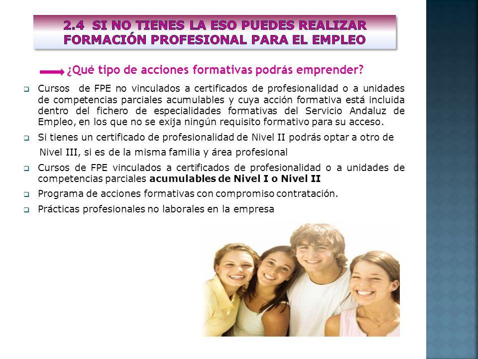 Cursos de FPE no vinculados a certificados de profesionalidad o a unidades de competencias parciales acumulables y cuya acción formativa está incluida
