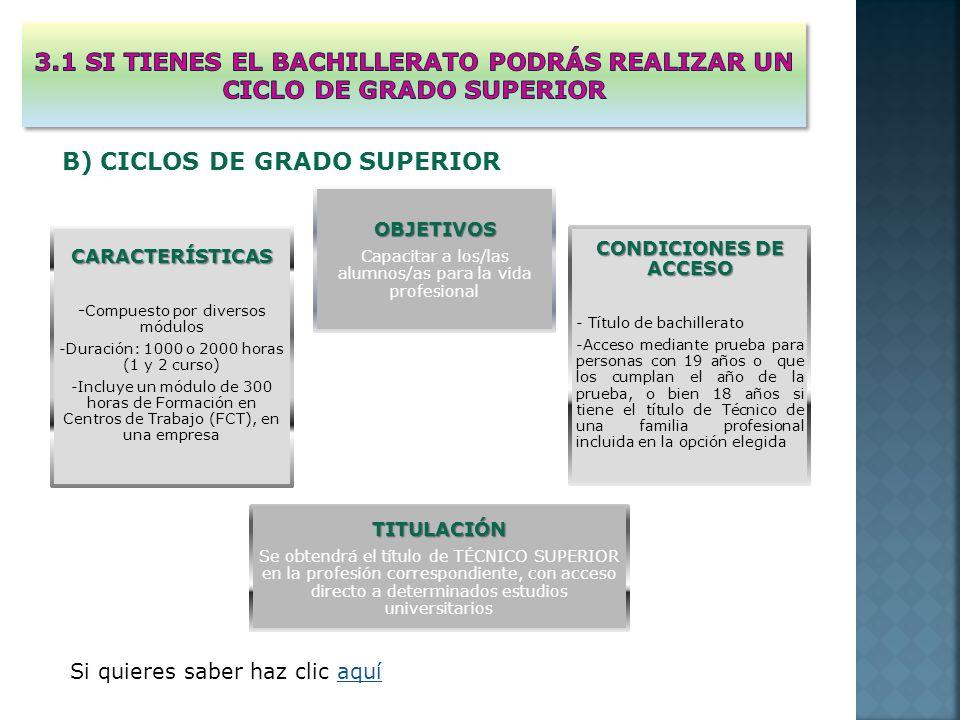 OBJETIVOS Capacitar a los/las alumnos/as para la vida profesional CARACTERÍSTICAS -Compuesto por diversos módulos -Duración: 1000 o 2000 horas (1 y 2