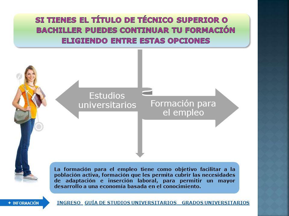 Estudios universitarios Formación para el empleo La formación para el empleo tiene como objetivo facilitar a la población activa, formación que les pe