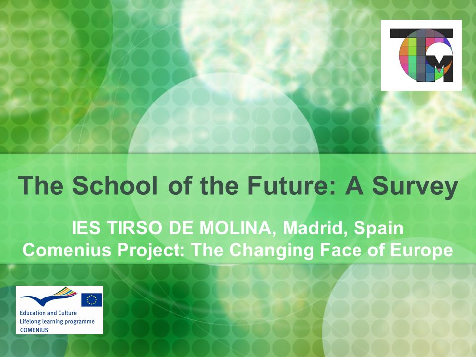 The School of the Future: A Survey IES TIRSO DE MOLINA, Madrid, Spain Comenius Project: The Changing Face of Europe