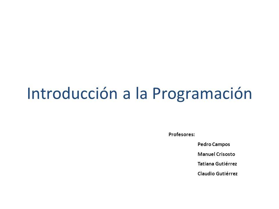 Introducción a la Programación Profesores: Pedro Campos Manuel Crisosto Tatiana Gutiérrez Claudio Gutiérrez