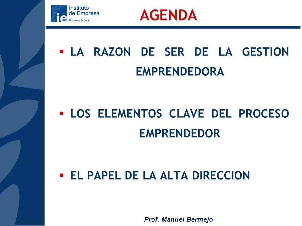 Prof. Manuel Bermejo CADENA DE VALOR (McKinsey)