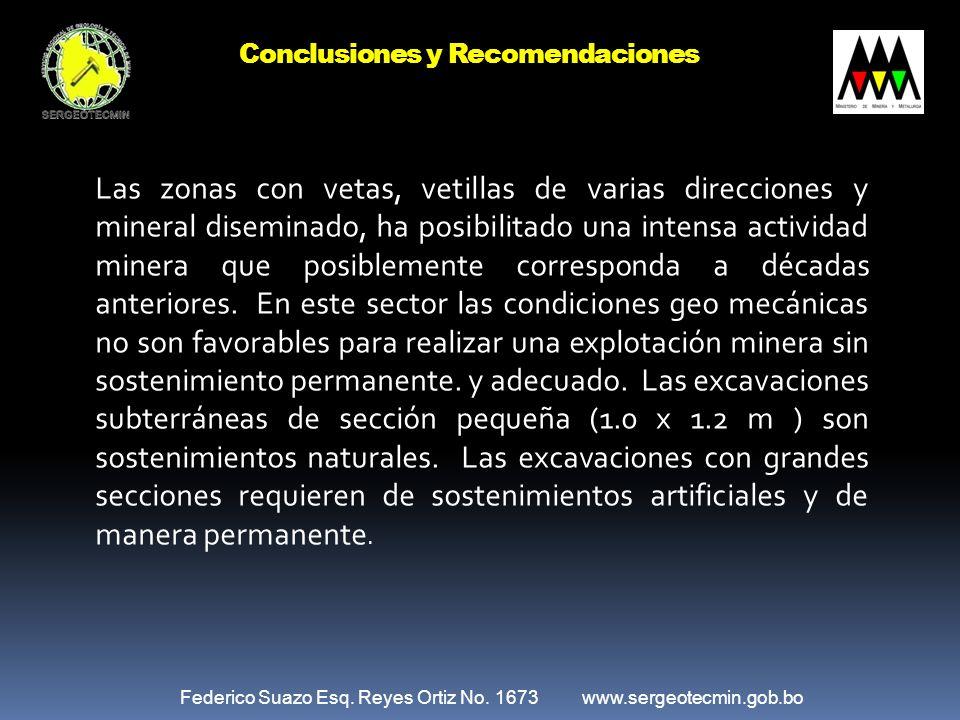 Federico Suazo Esq. Reyes Ortiz No. 1673 www.sergeotecmin.gob.bo Las zonas con vetas, vetillas de varias direcciones y mineral diseminado, ha posibili