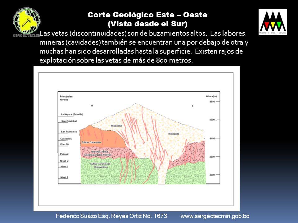 Corte Geológico Este – Oeste (Vista desde el Sur) Federico Suazo Esq. Reyes Ortiz No. 1673 www.sergeotecmin.gob.bo Las vetas (discontinuidades) son de