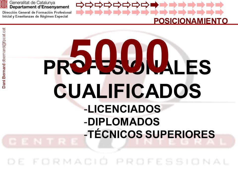 Dirección General de Formación Profesional Inicial y Enseñanzas de Régimen Especial POSICIONAMIENTO PROFESIONALES CUALIFICADOS -LICENCIADOS -DIPLOMADO