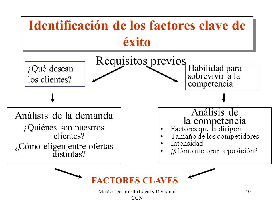 Master Desarrollo Local y Regional CGN 40 Identificación de los factores clave de éxito Análisis de la demanda ¿Quiénes son nuestros clientes? ¿Cómo e