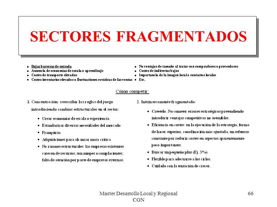 Master Desarrollo Local y Regional CGN 66 SECTORES FRAGMENTADOS