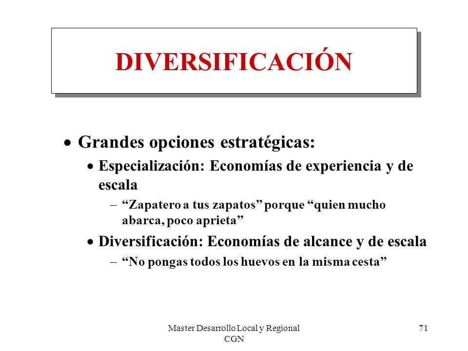 Master Desarrollo Local y Regional CGN 71 DIVERSIFICACIÓN Grandes opciones estratégicas: Especialización: Economías de experiencia y de escala –Zapate
