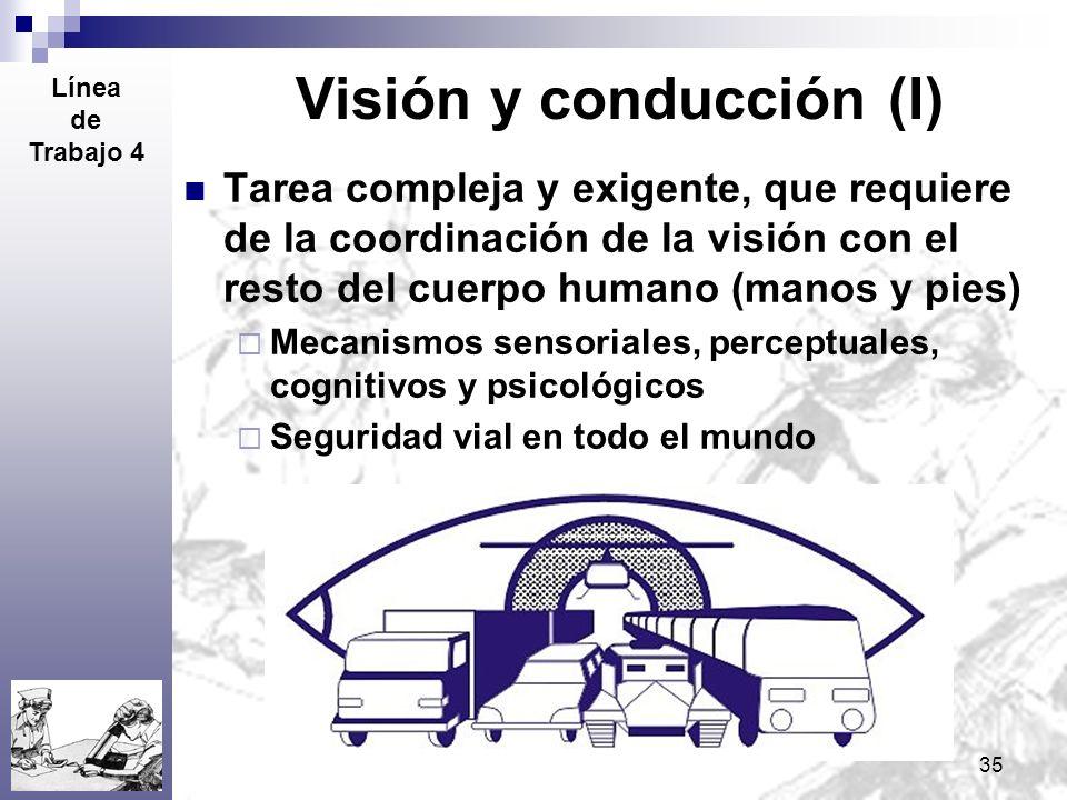 35 Visión y conducción (I) Tarea compleja y exigente, que requiere de la coordinación de la visión con el resto del cuerpo humano (manos y pies) Mecan