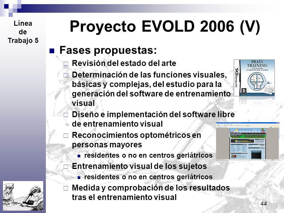 44 Proyecto EVOLD 2006 (V) Fases propuestas: Revisión del estado del arte Determinación de las funciones visuales, básicas y complejas, del estudio pa