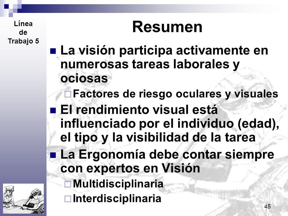 45 Resumen La visión participa activamente en numerosas tareas laborales y ociosas Factores de riesgo oculares y visuales El rendimiento visual está i