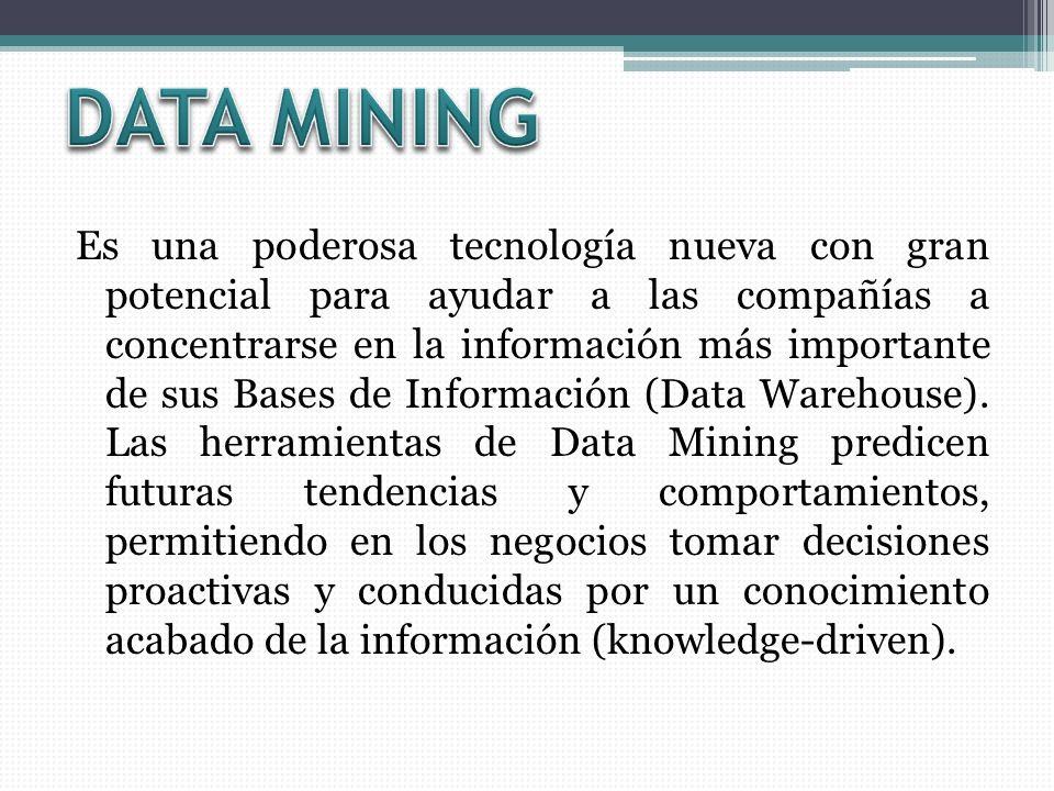 Es una poderosa tecnología nueva con gran potencial para ayudar a las compañías a concentrarse en la información más importante de sus Bases de Información (Data Warehouse).