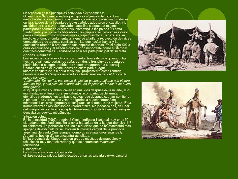 Descripción de las principales actividades económicas: Guanacos y Ñandúes eran sus principales animales de caza. Los métodos de caza variaron con el t