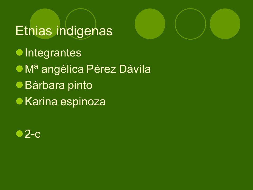 Etnias indigenas Integrantes Mª angélica Pérez Dávila Bárbara pinto Karina espinoza 2-c