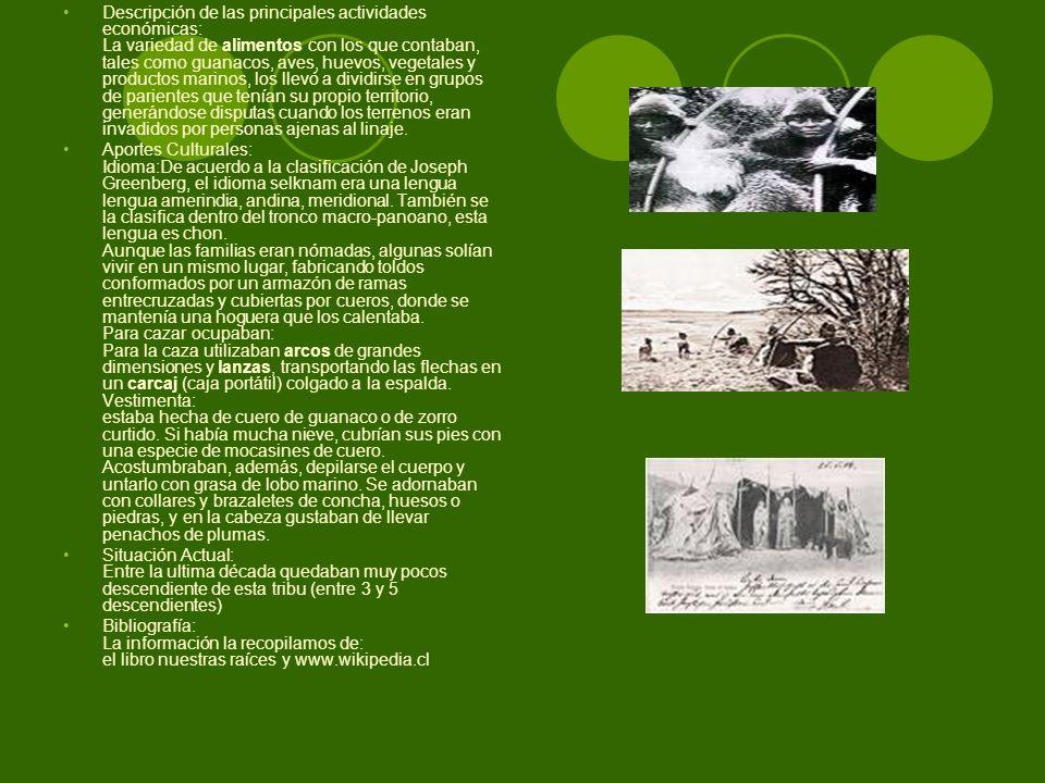 Descripción de las principales actividades económicas: La variedad de alimentos con los que contaban, tales como guanacos, aves, huevos, vegetales y p