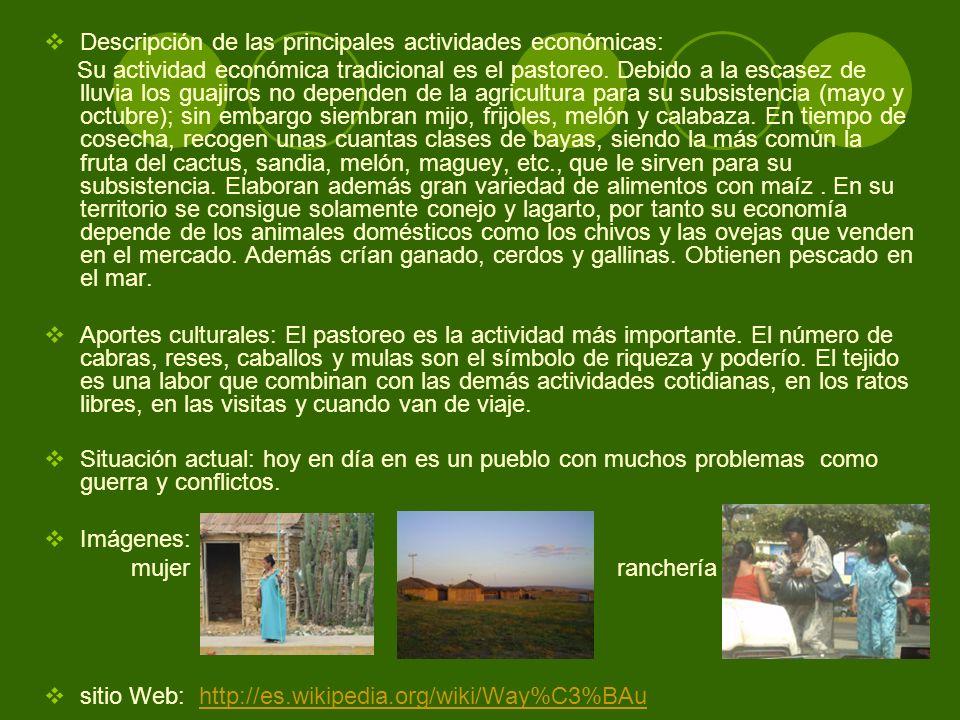 Descripción de las principales actividades económicas: Su actividad económica tradicional es el pastoreo. Debido a la escasez de lluvia los guajiros n