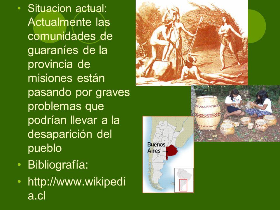 Situacion actual: Actualmente las comunidades de guaraníes de la provincia de misiones están pasando por graves problemas que podrían llevar a la desa