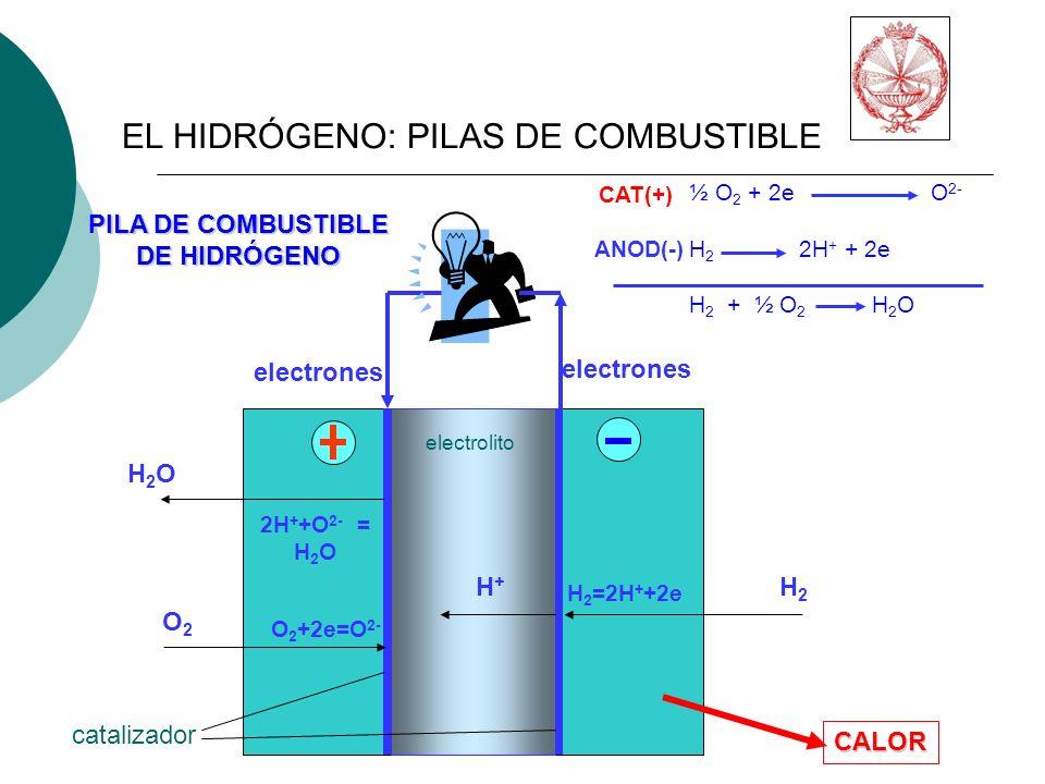 EL HIDRÓGENO: PILAS DE COMBUSTIBLE ½ O 2 + 2e O 2- H 2 2H + + 2e H 2 + ½ O 2 H 2 O CAT(+) ANOD(-) PILA DE COMBUSTIBLE DE HIDRÓGENO electrolito catalizador H2OH2O O2O2 H2H2 H+H+ electrones 2H + +O 2- = H 2 O O 2 +2e=O 2- H 2 =2H + +2e CALOR