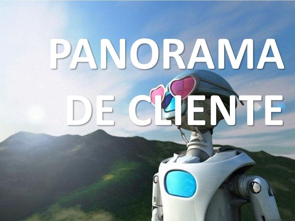 PANORAMA DE CLIENTE