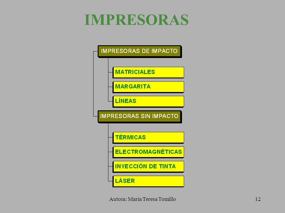 Autora: María Teresa Tomillo11 RESOLUCIÓN DEL MONITOR Tamaño del monitorResolución máxima 141.024 x 768 151.024 x 768 171.280 x 1.024 191.600 x 1.200