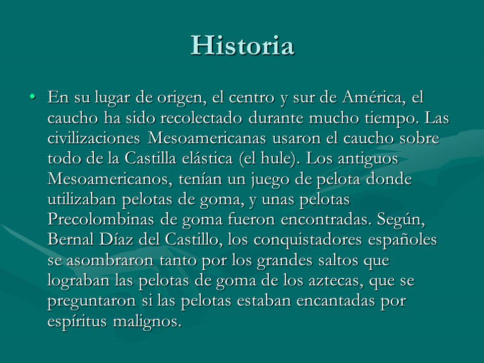 Historia En su lugar de origen, el centro y sur de América, el caucho ha sido recolectado durante mucho tiempo. Las civilizaciones Mesoamericanas usar