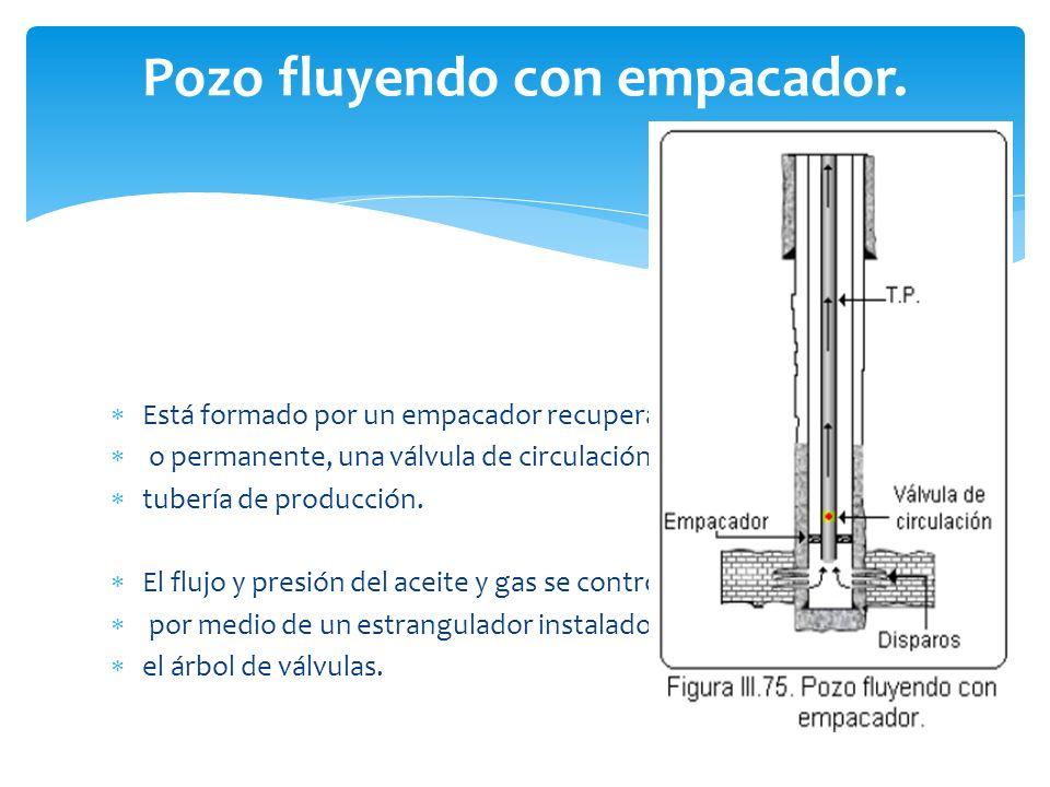 Pozo fluyendo con empacador. Está formado por un empacador recuperable o permanente, una válvula de circulación y la tubería de producción. El flujo y
