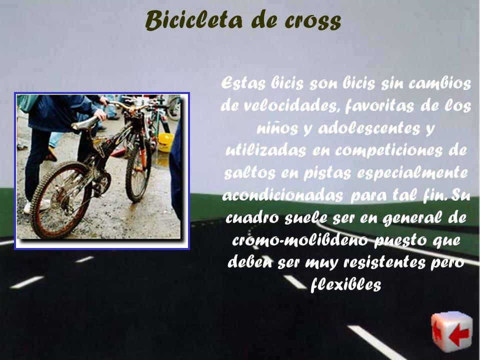 Bicicleta de montaña (también llamadas mountain bike) Las bicis de montaña son las más populares. Este deporte surgió en la década de los ochenta y si