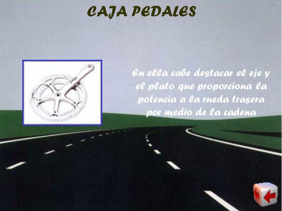 RUEDAS Las ruedas son los elementos que más han evolucionado en la bicicleta. Los hay de radios, de bastones o lenticulares, estudiadas estas últimas