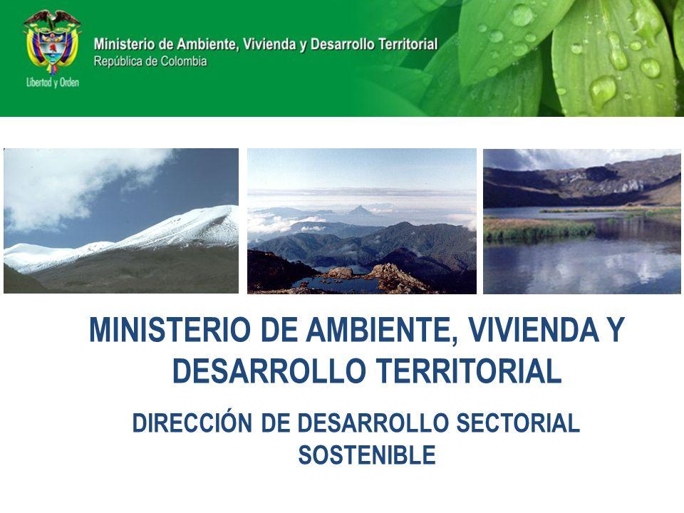 MINISTERIO DE AMBIENTE, VIVIENDA Y DESARROLLO TERRITORIAL DIRECCIÓN DE DESARROLLO SECTORIAL SOSTENIBLE