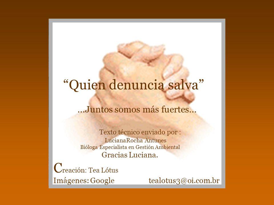 Quien denuncia salva...Juntos somos más fuertes... Texto técnico enviado por : LucianaRocha Antunes Bióloga Especialista en Gestión Ambiental Gracias