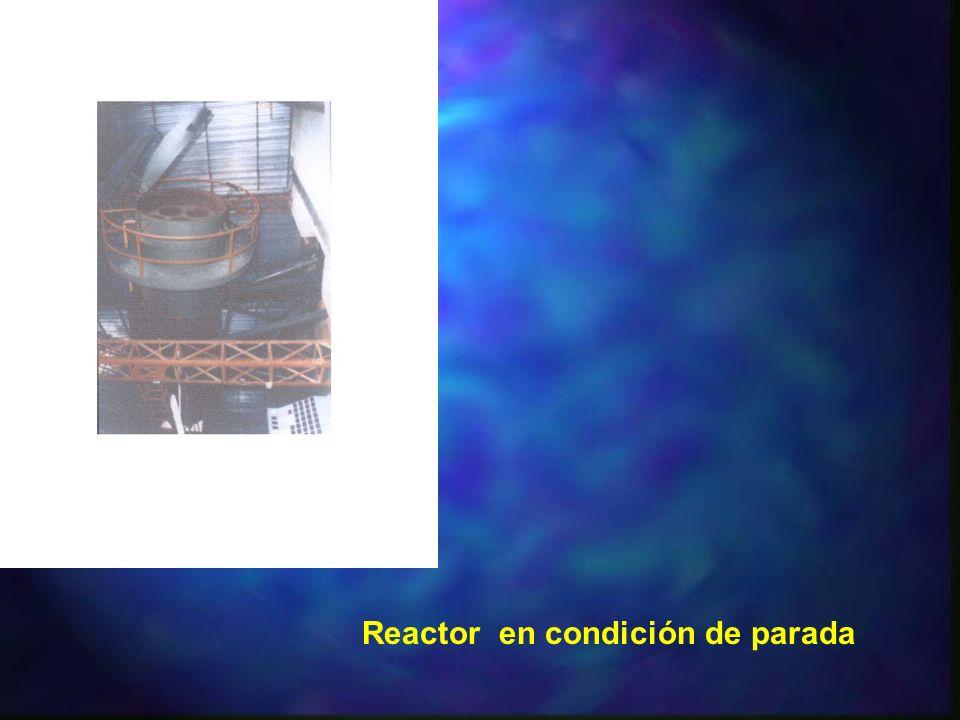 Reactor en condición de parada