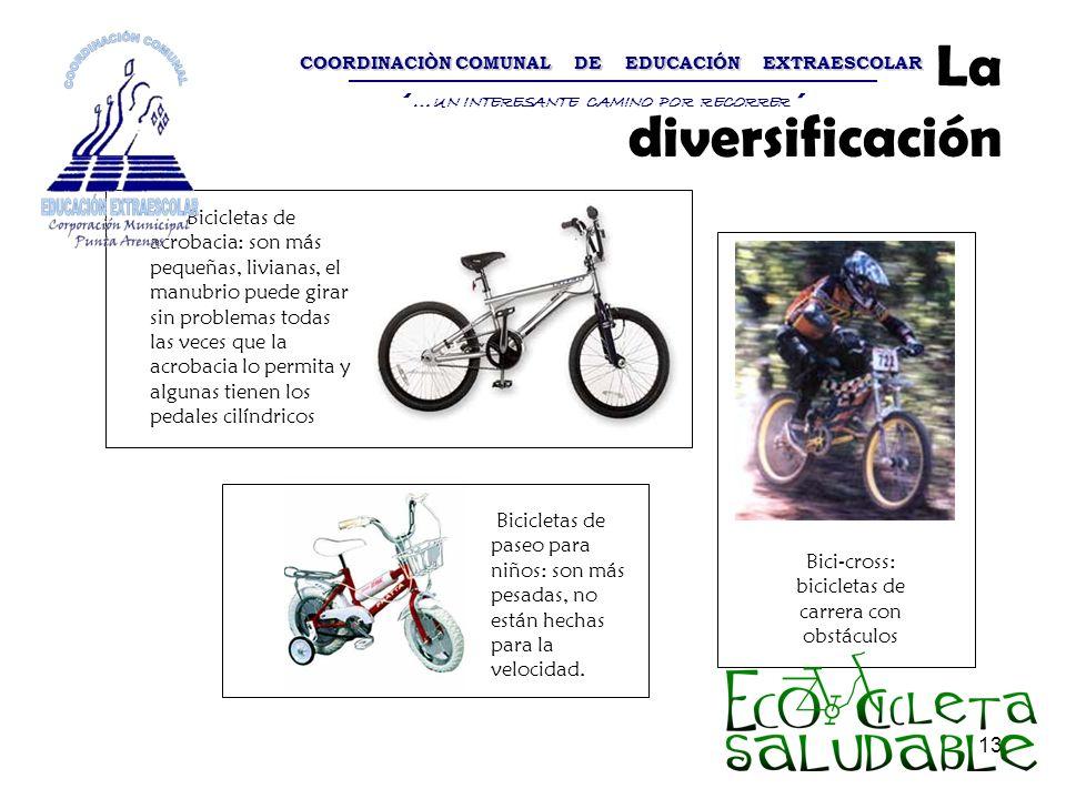 13 La diversificación Bicicletas de acrobacia: son más pequeñas, livianas, el manubrio puede girar sin problemas todas las veces que la acrobacia lo p