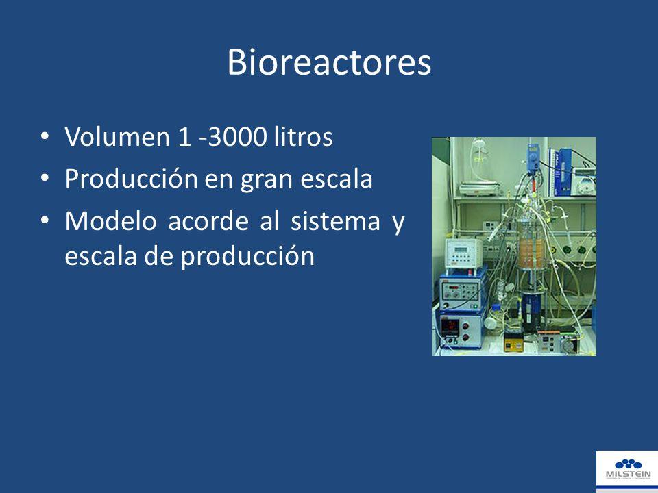 Bioreactores Volumen 1 -3000 litros Producción en gran escala Modelo acorde al sistema y escala de producción