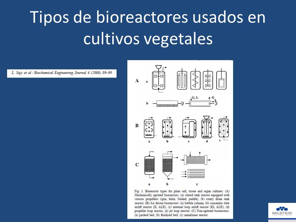 Tipos de bioreactores usados en cultivos vegetales