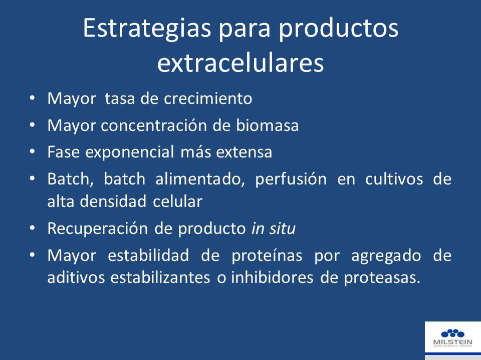 Estrategias para productos extracelulares Mayor tasa de crecimiento Mayor concentración de biomasa Fase exponencial más extensa Batch, batch alimentado, perfusión en cultivos de alta densidad celular Recuperación de producto in situ Mayor estabilidad de proteínas por agregado de aditivos estabilizantes o inhibidores de proteasas.