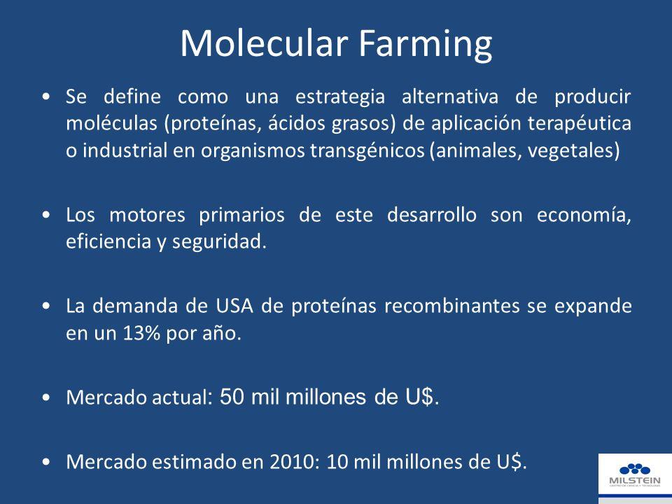 Molecular Farming Se define como una estrategia alternativa de producir moléculas (proteínas, ácidos grasos) de aplicación terapéutica o industrial en organismos transgénicos (animales, vegetales) Los motores primarios de este desarrollo son economía, eficiencia y seguridad.