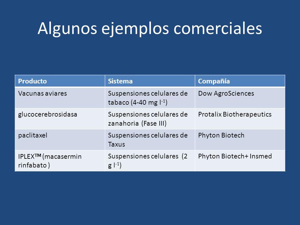 Algunos ejemplos comerciales ProductoSistemaCompañía Vacunas aviaresSuspensiones celulares de tabaco (4-40 mg l -1 ) Dow AgroSciences glucocerebrosidasaSuspensiones celulares de zanahoria (Fase III) Protalix Biotherapeutics paclitaxelSuspensiones celulares de Taxus Phyton Biotech IPLEX (macasermin rinfabato ) Suspensiones celulares (2 g l -1 ) Phyton Biotech+ Insmed