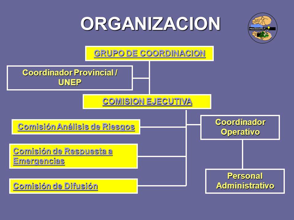 ORGANIZACION GRUPO DE COORDINACION GRUPO DE COORDINACION COMISION EJECUTIVA COMISION EJECUTIVA Comisión Análisis de Riesgos Comisión Análisis de Riesg