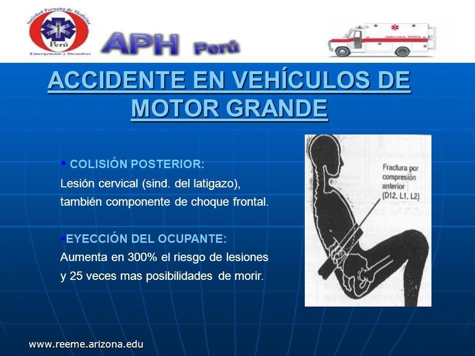 www.reeme.arizona.edu ACCIDENTE EN VEHÍCULOS DE MOTOR GRANDE COLISIÓN POSTERIOR: Lesión cervical (sind. del latigazo), también componente de choque fr